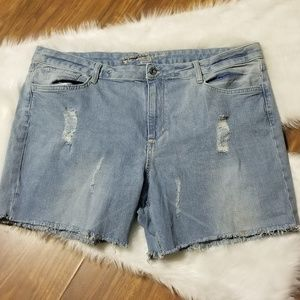 Arizona Jean Co. Shorts